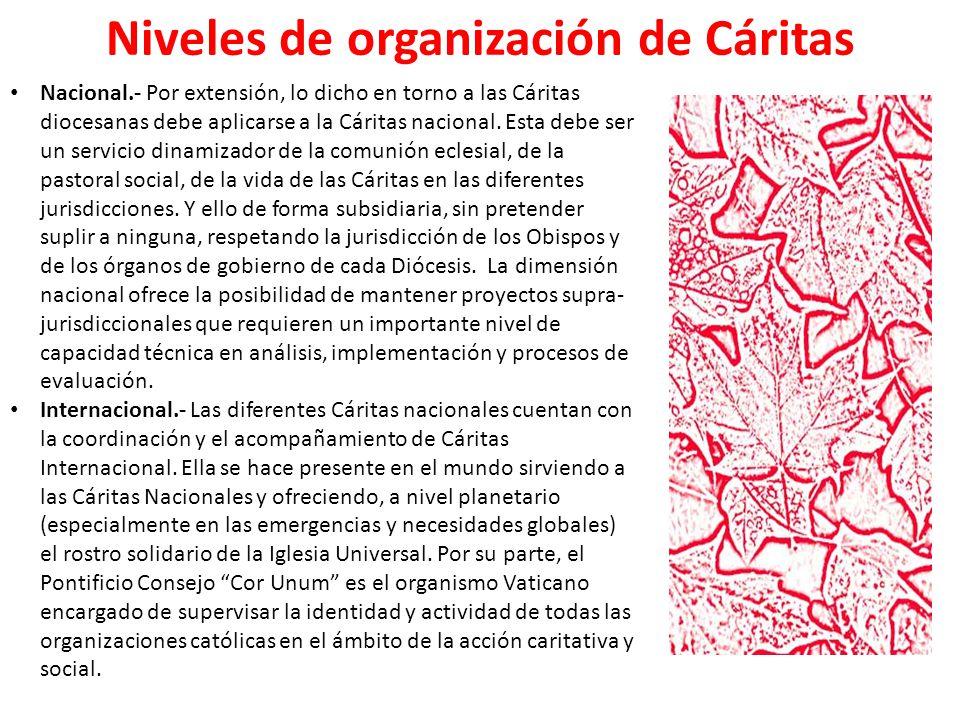 Niveles de organización de Cáritas