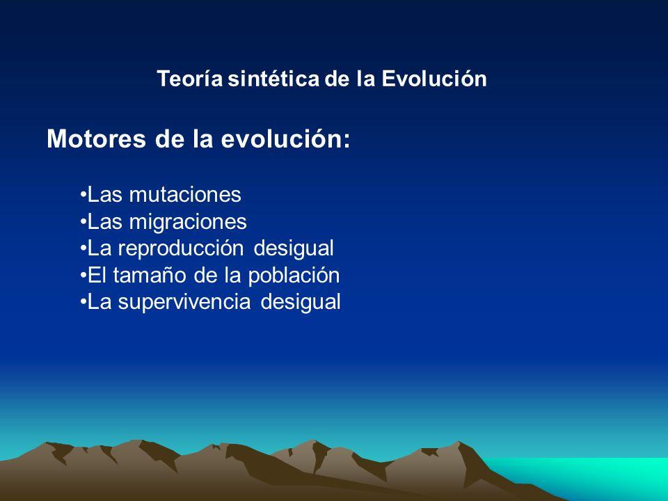 Motores de la evolución: