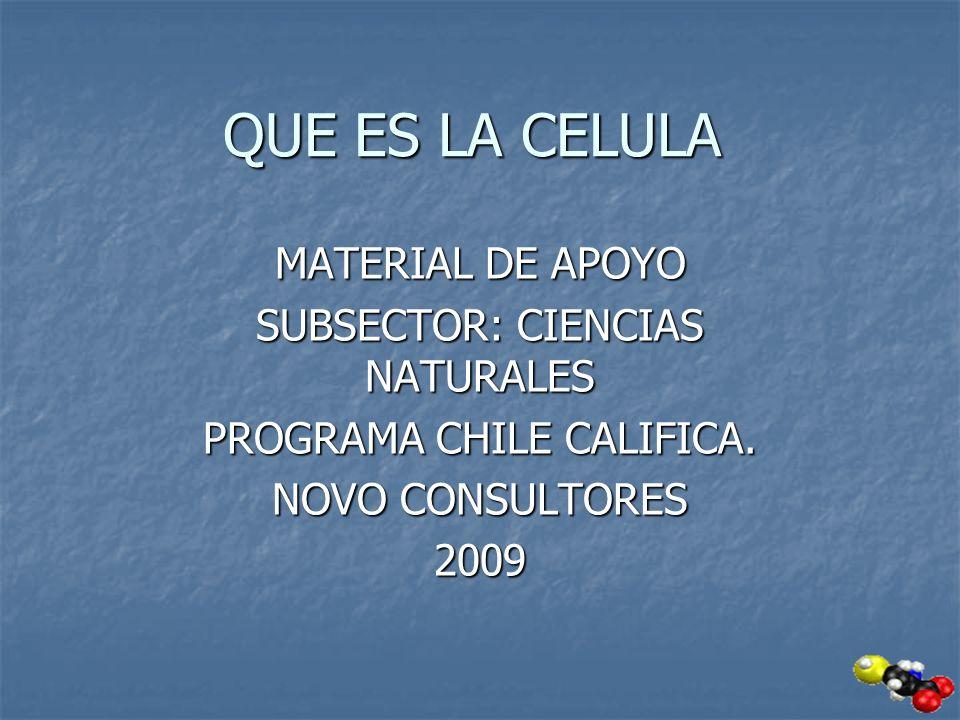 QUE ES LA CELULA MATERIAL DE APOYO SUBSECTOR: CIENCIAS NATURALES