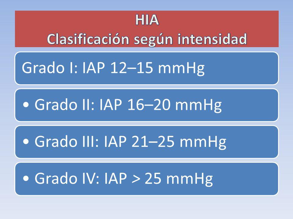 HIA Clasificación según intensidad