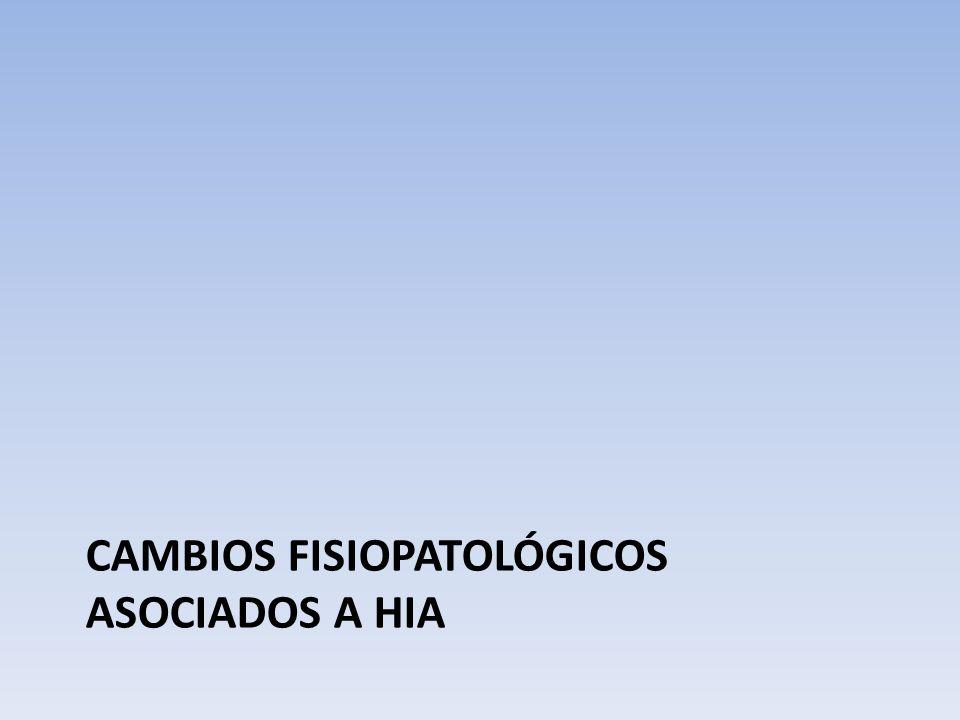 Cambios fisiopatológicos asociados a HIA