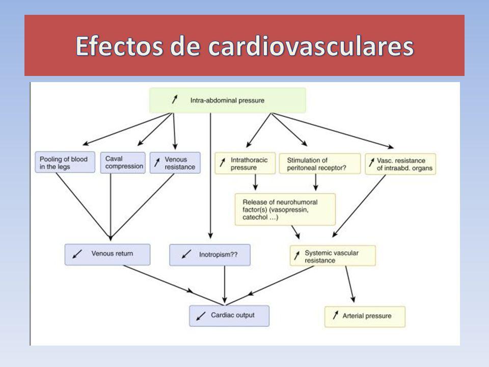 Efectos de cardiovasculares