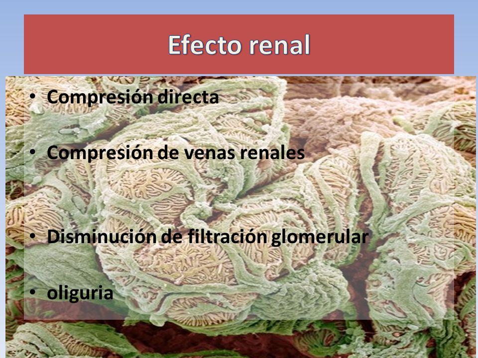Efecto renal Compresión directa Compresión de venas renales