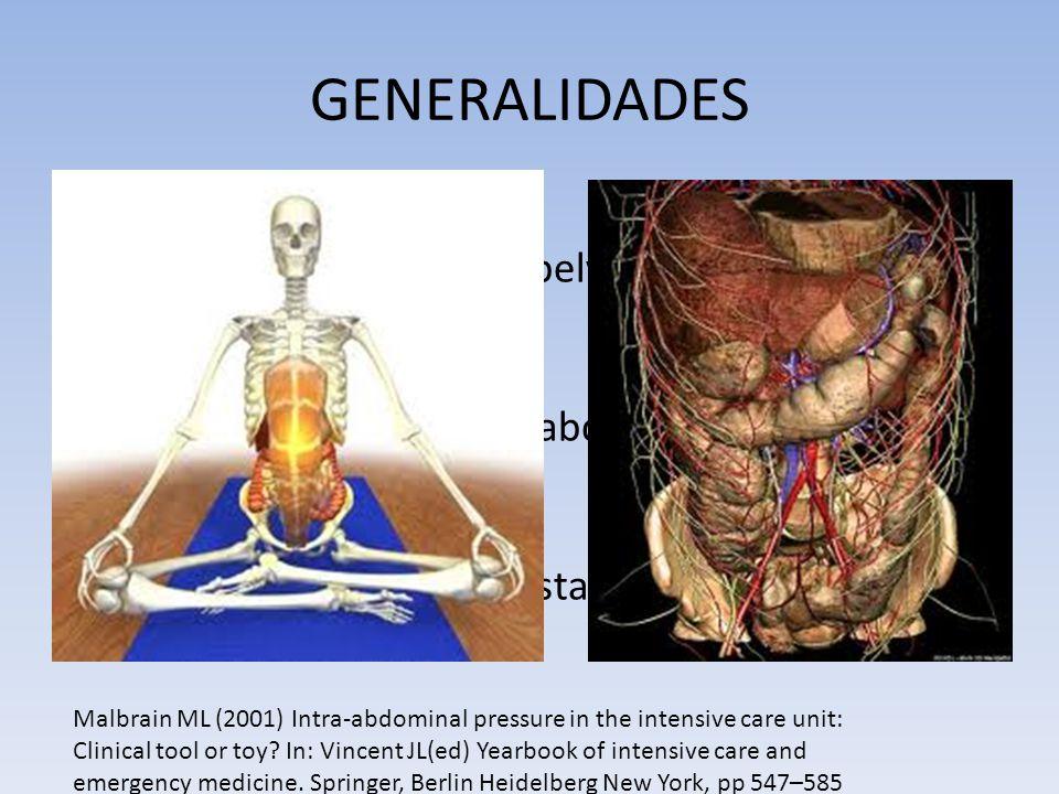 GENERALIDADES Cavidad abdominal Rígida: costilla, vertebras, pelvis