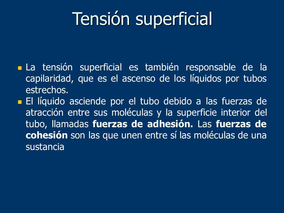 Tensión superficial La tensión superficial es también responsable de la capilaridad, que es el ascenso de los líquidos por tubos estrechos.