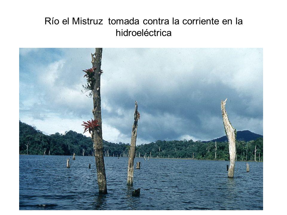 Río el Mistruz tomada contra la corriente en la hidroeléctrica