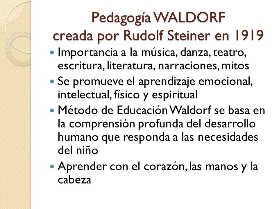 Pedagogía WALDORF creada por Rudolf Steiner en 1919