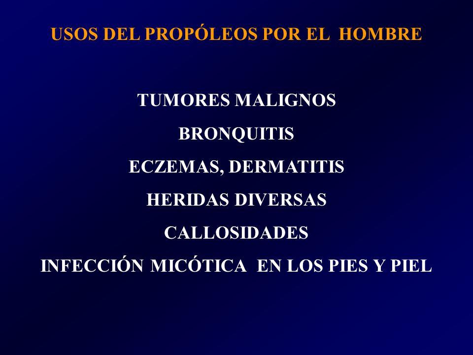 USOS DEL PROPÓLEOS POR EL HOMBRE INFECCIÓN MICÓTICA EN LOS PIES Y PIEL