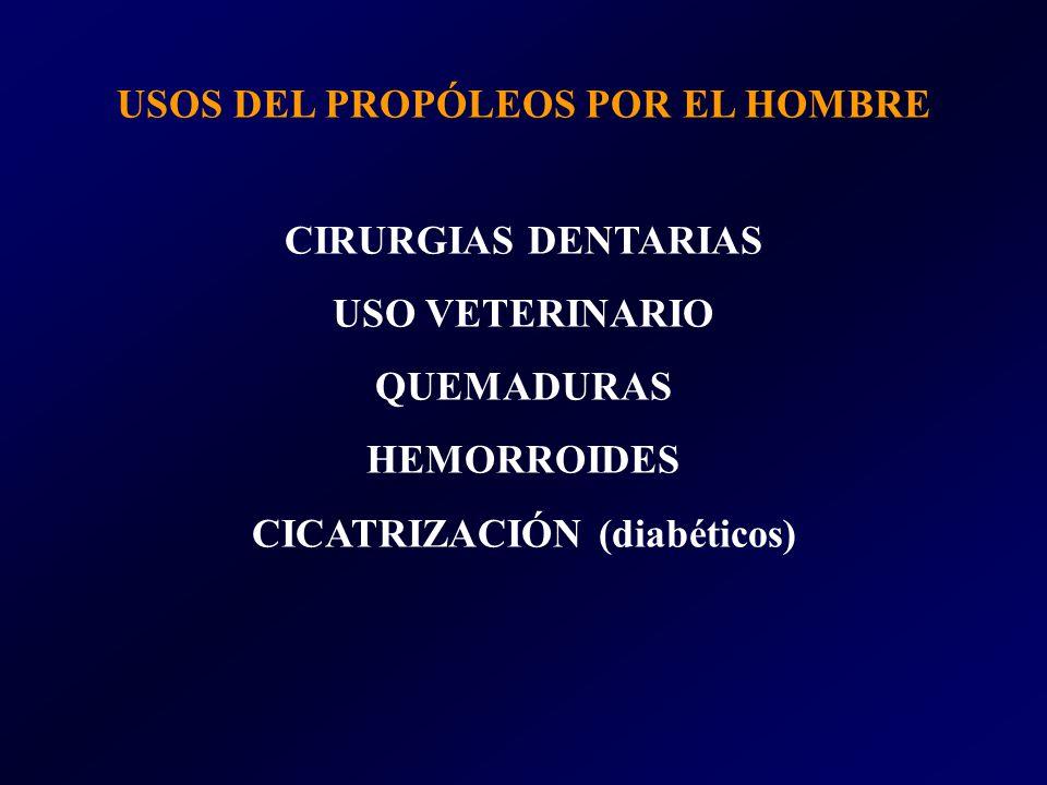 USOS DEL PROPÓLEOS POR EL HOMBRE CICATRIZACIÓN (diabéticos)