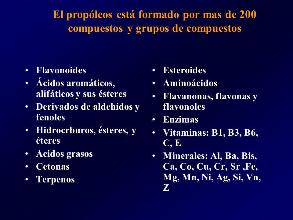 El propóleos está formado por mas de 200 compuestos y grupos de compuestos