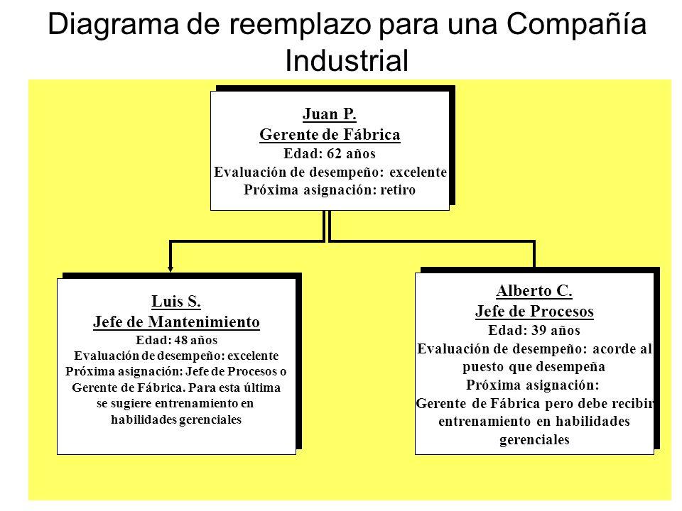 Diagrama de reemplazo para una Compañía Industrial