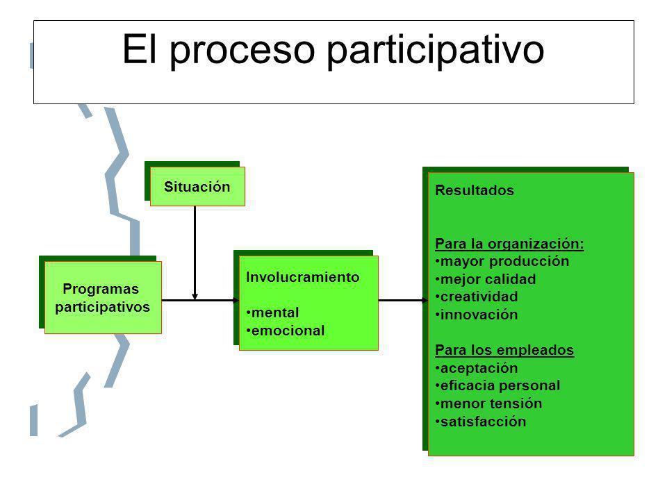 El proceso participativo