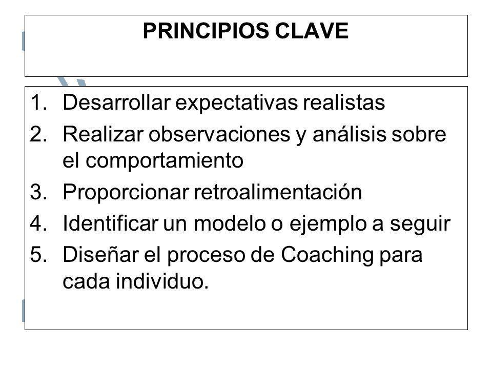 PRINCIPIOS CLAVE Desarrollar expectativas realistas. Realizar observaciones y análisis sobre el comportamiento.