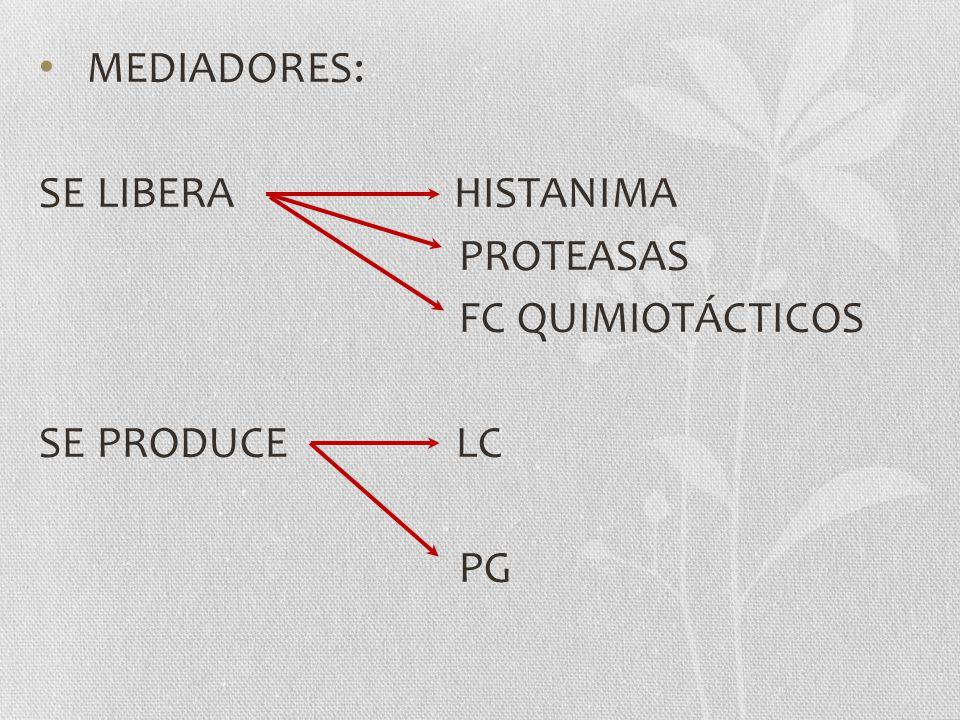 MEDIADORES: SE LIBERA HISTANIMA. PROTEASAS. FC QUIMIOTÁCTICOS. SE PRODUCE LC.