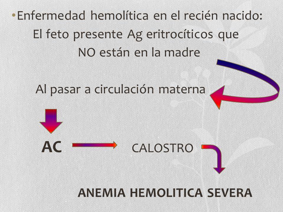 Enfermedad hemolítica en el recién nacido: