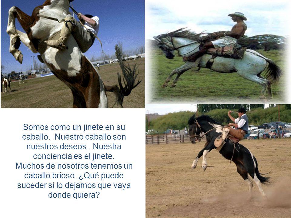 Somos como un jinete en su caballo. Nuestro caballo son nuestros deseos. Nuestra conciencia es el jinete.