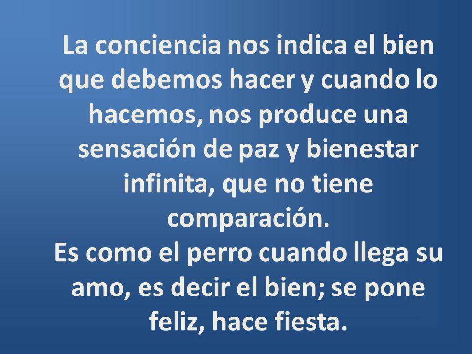 La conciencia nos indica el bien que debemos hacer y cuando lo hacemos, nos produce una sensación de paz y bienestar infinita, que no tiene comparación.