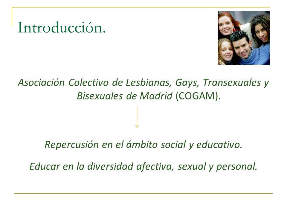 Introducción. Asociación Colectivo de Lesbianas, Gays, Transexuales y Bisexuales de Madrid (COGAM).