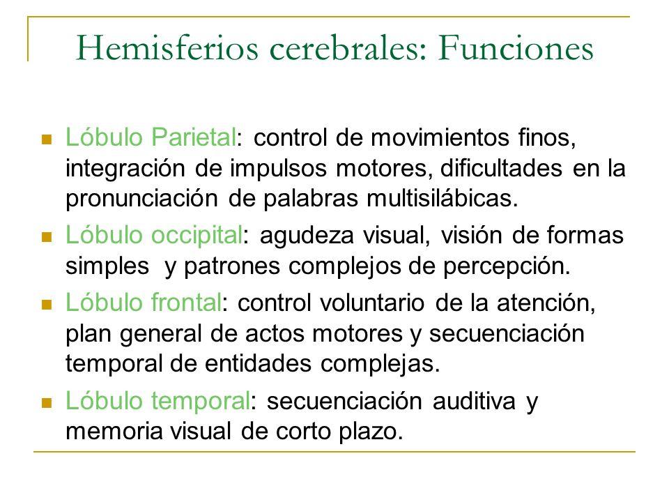 Hemisferios cerebrales: Funciones