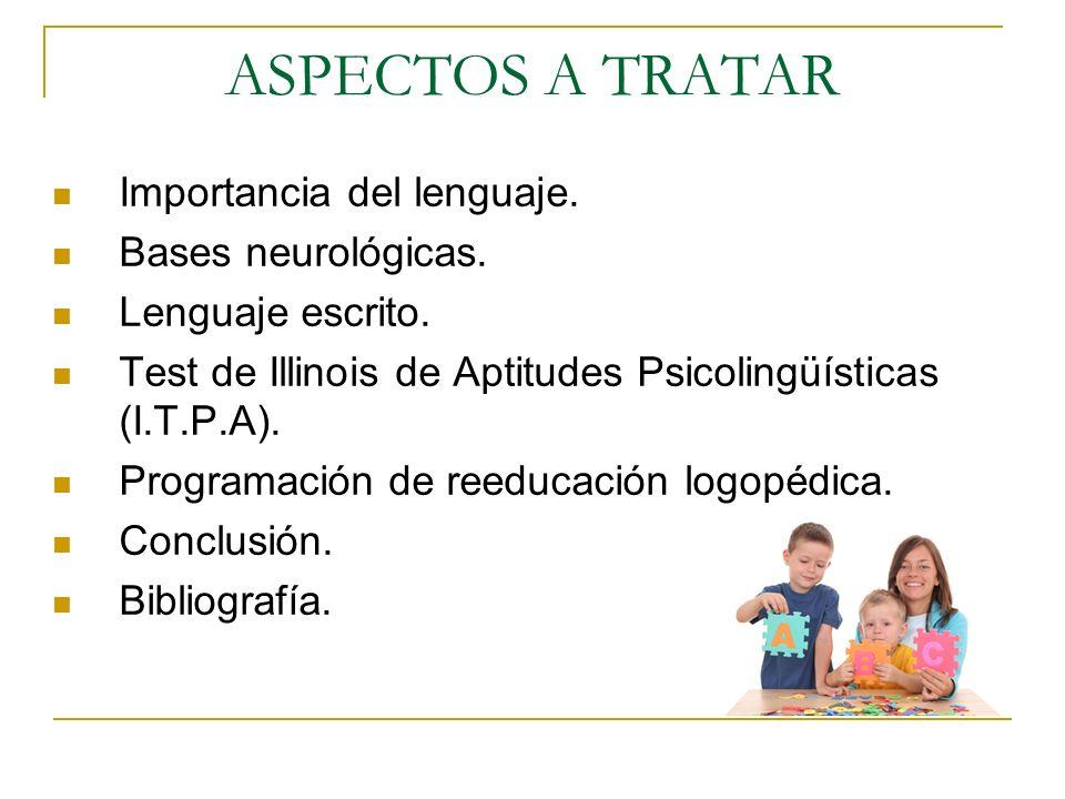 ASPECTOS A TRATAR Importancia del lenguaje. Bases neurológicas.