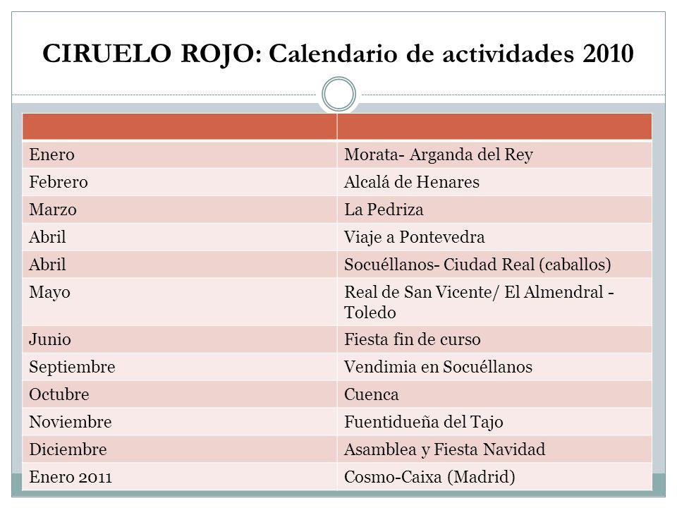 CIRUELO ROJO: Calendario de actividades 2010