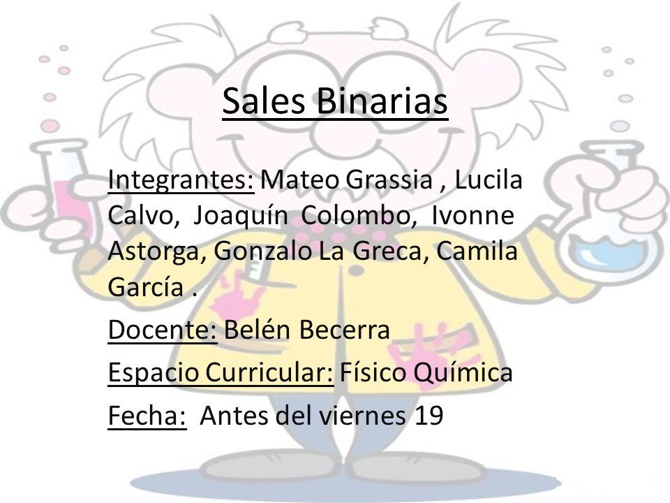 Sales Binarias Integrantes: Mateo Grassia , Lucila Calvo, Joaquín Colombo, Ivonne Astorga, Gonzalo La Greca, Camila García .