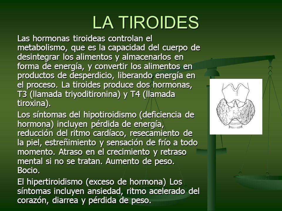 LA TIROIDES