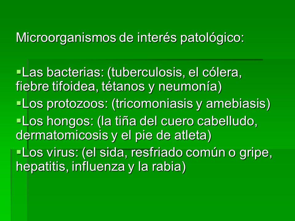 Microorganismos de interés patológico: