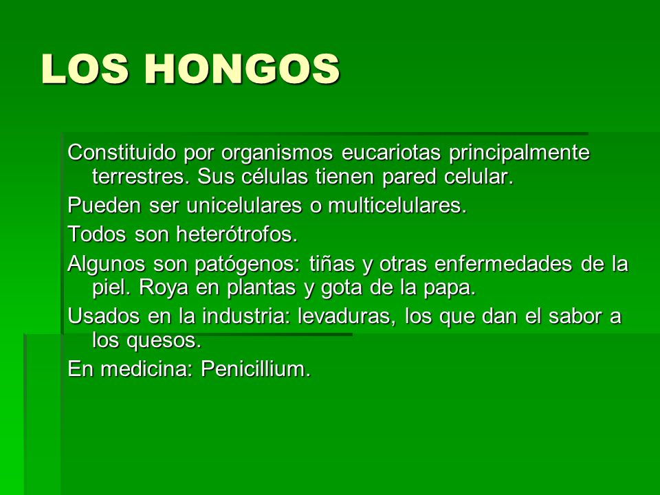 LOS HONGOS Constituido por organismos eucariotas principalmente terrestres. Sus células tienen pared celular.