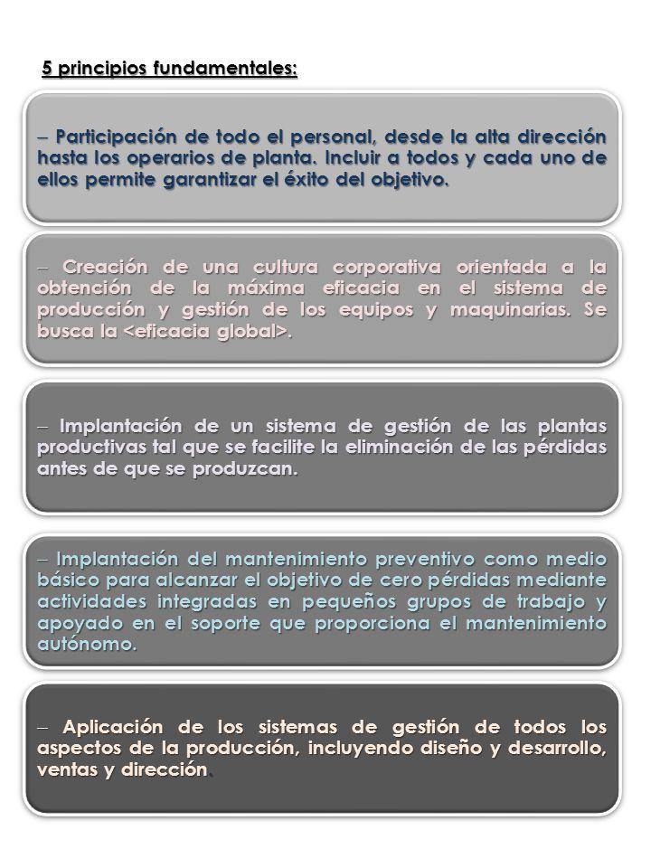 5 principios fundamentales:
