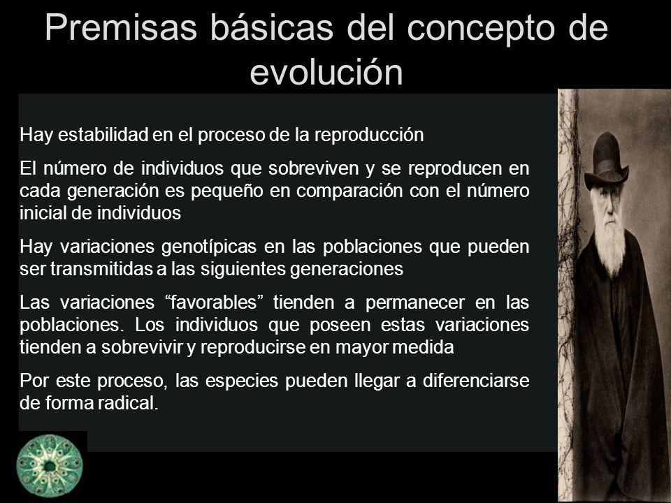 Premisas básicas del concepto de evolución