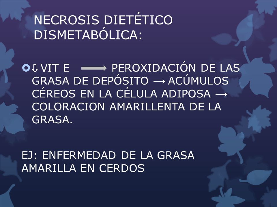 NECROSIS DIETÉTICO DISMETABÓLICA: