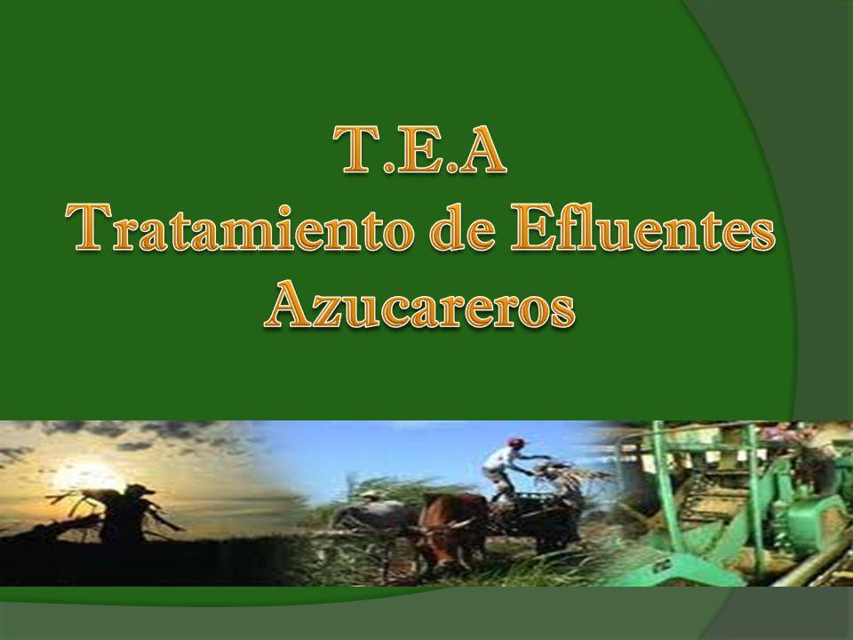 T.E.A Tratamiento de Efluentes Azucareros