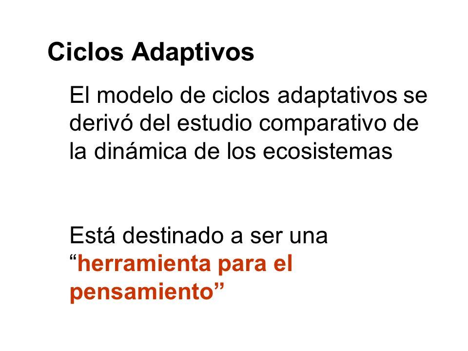 Ciclos Adaptivos El modelo de ciclos adaptativos se derivó del estudio comparativo de la dinámica de los ecosistemas.