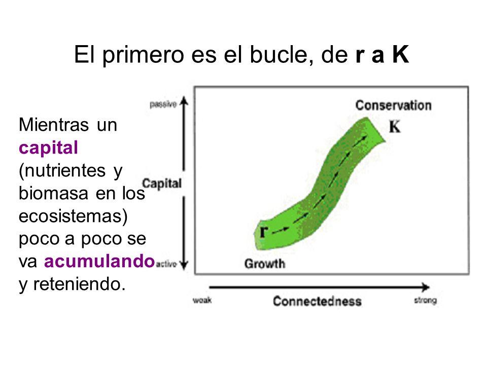 El primero es el bucle, de r a K