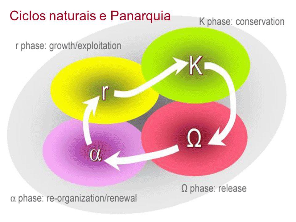 Ciclos naturais e Panarquia