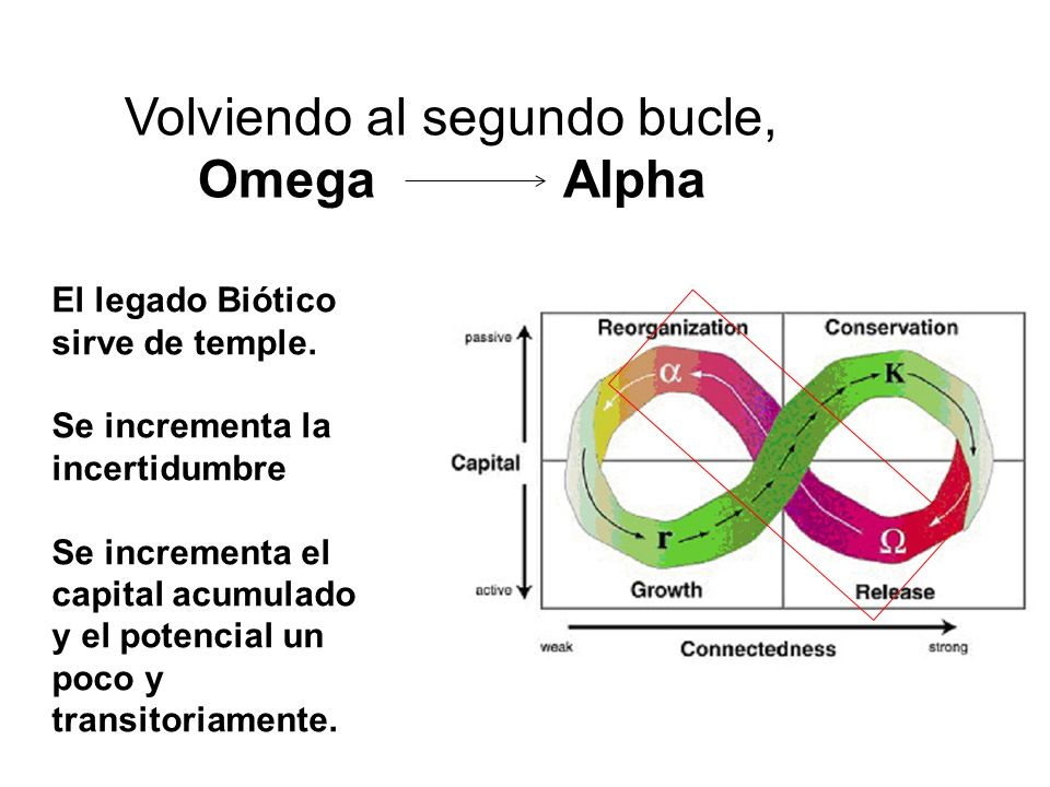 Volviendo al segundo bucle, Omega Alpha