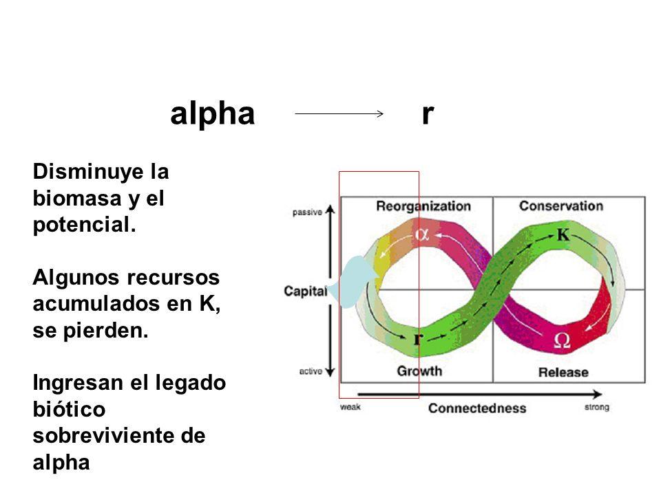 alpha r Disminuye la biomasa y el potencial.