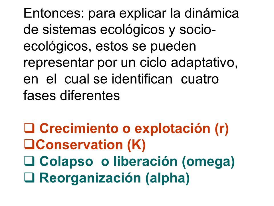 Entonces: para explicar la dinámica de sistemas ecológicos y socio-ecológicos, estos se pueden representar por un ciclo adaptativo, en el cual se identifican cuatro fases diferentes