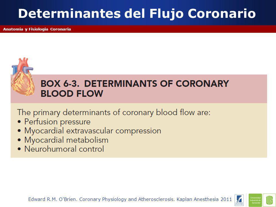 Determinantes del Flujo Coronario