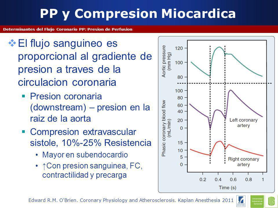 PP y Compresion Miocardica