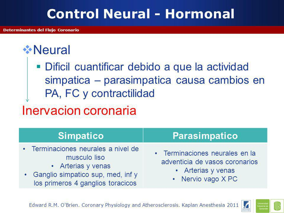 Control Neural - Hormonal
