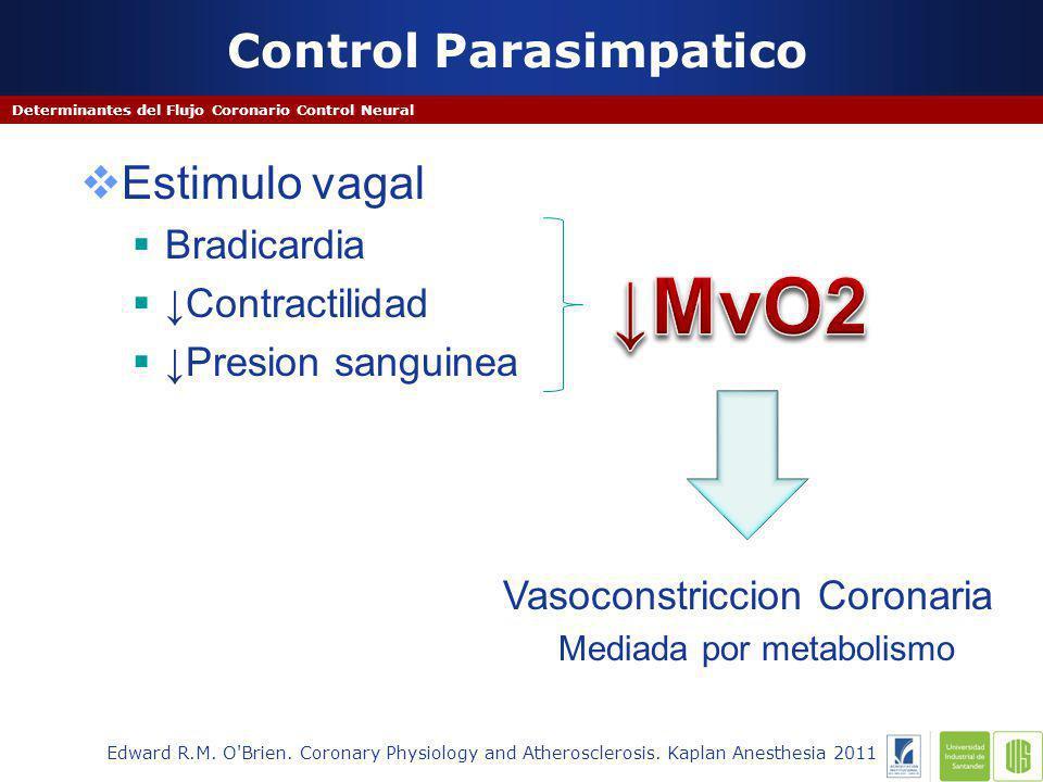 Control Parasimpatico