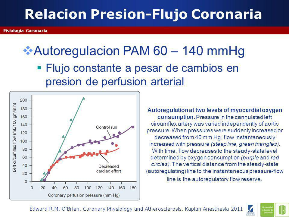 Relacion Presion-Flujo Coronaria