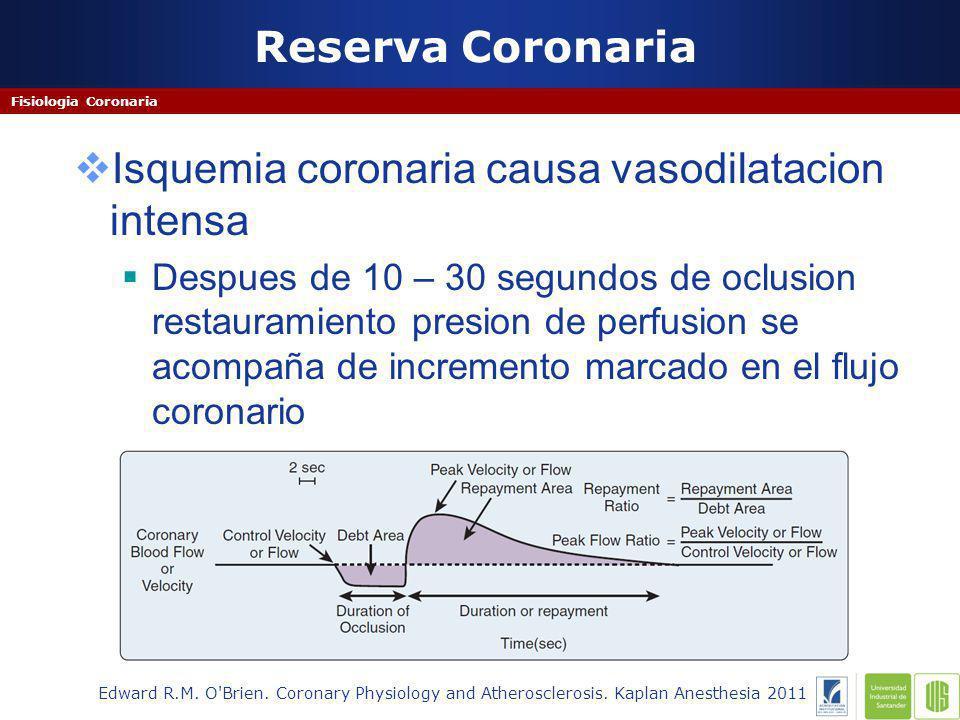 Isquemia coronaria causa vasodilatacion intensa