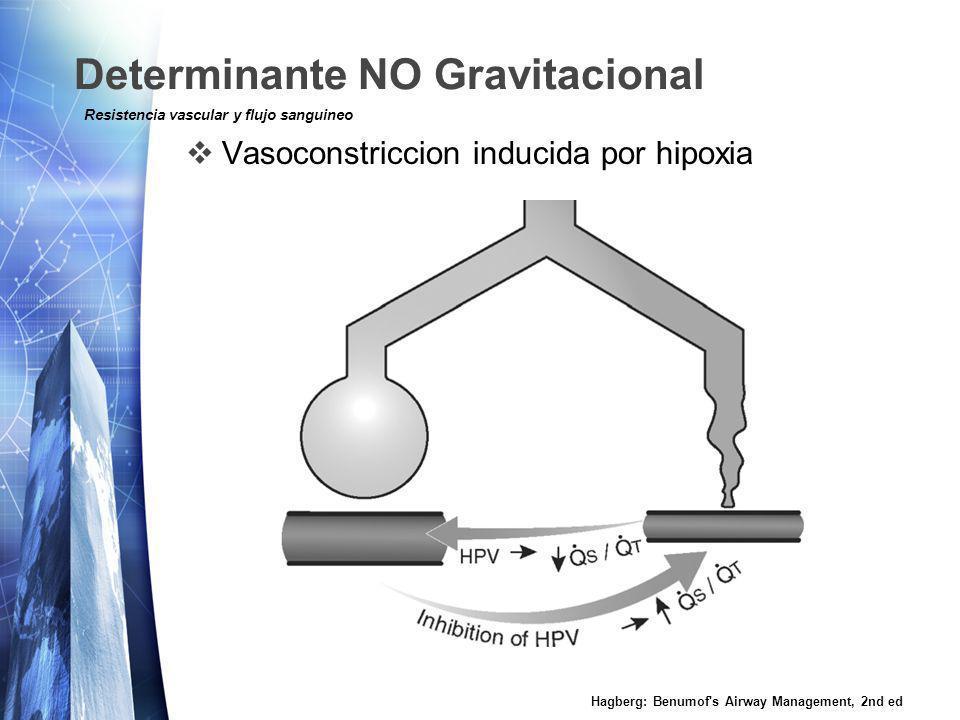 Determinante NO Gravitacional