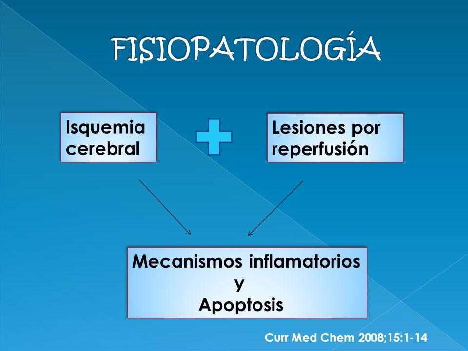 FISIOPATOLOGÍA Isquemia Lesiones por reperfusión cerebral