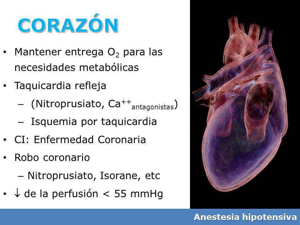 CORAZÓN Mantener entrega O2 para las necesidades metabólicas