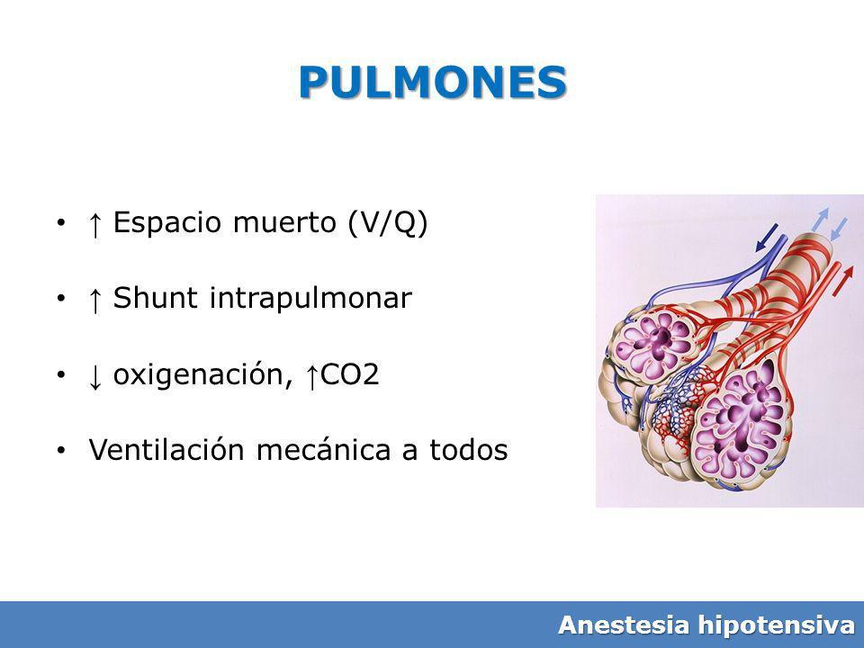 PULMONES ↑ Espacio muerto (V/Q) ↑ Shunt intrapulmonar