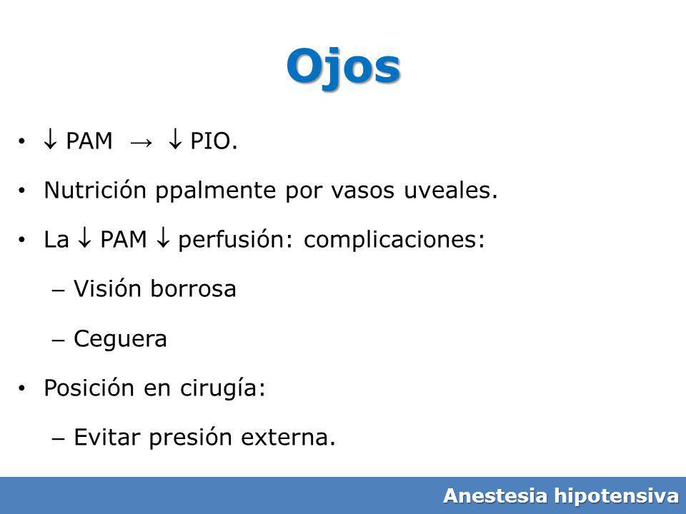 Ojos  PAM →  PIO. Nutrición ppalmente por vasos uveales.
